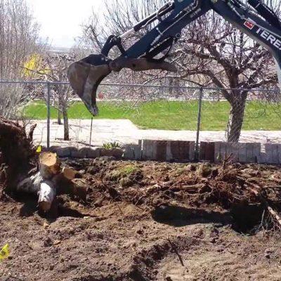 Enlèvement sécuritaire de souches d'arbres