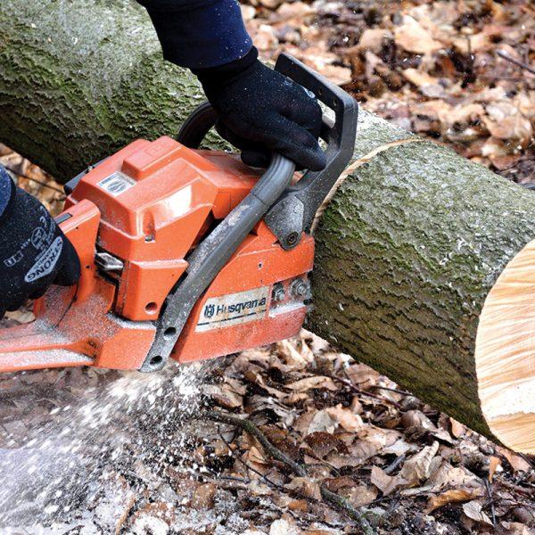 Spécialiste en coupe d'arbre